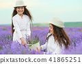 young woman and girl are in the lavender field 41865251
