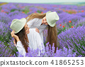 young woman and girl are in the lavender field 41865253