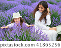 young woman and girl are in the lavender field 41865256