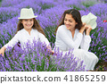 young woman and girl are in the lavender field 41865259