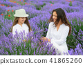 young woman and girl are in the lavender field 41865260