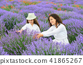 young woman and girl are in the lavender field 41865267