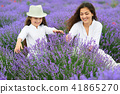 young woman and girl are in the lavender field 41865270