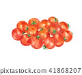 mini tomato, miniature tomato, vegetables 41868207