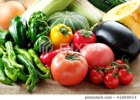 夏季蔬菜 41869014