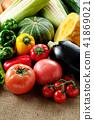 야채, 채소, 여름 야채 41869021
