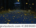 uchio shrine, firefly, fireflies 41869680