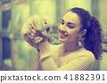 female customer watching fluffy chinchilla in petshop 41882391