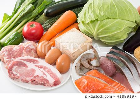 食物集 41889197