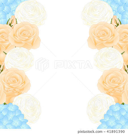 Orange Rose, Blue Hydrangea and Ranunculus Border 41891390