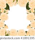 Orange Rose Border 41891395