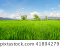 agriculture, country, countryside 41894279