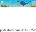 สัตว์ทะเล 2 41898259