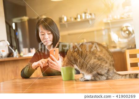 cat drink water 41900269