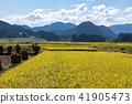Akita prefecture Yuzawa city rural piled sun-dried sun-dried (September) 41905473