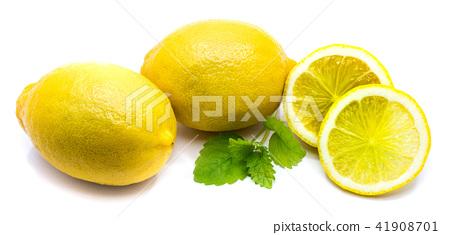 Fresh lemon and melissa isolated 41908701