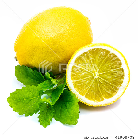 Fresh lemon and melissa isolated 41908708