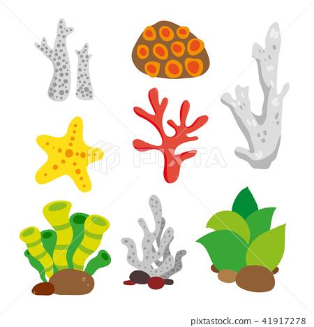 coral vector collection design 41917278