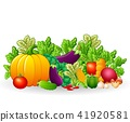 food fruit ingredient 41920581