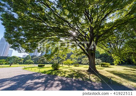 hamarikyu gardens, landscaping, stroll rockery fountain garden ...