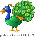 Happy peacock cartoon isolated on white background 41924779