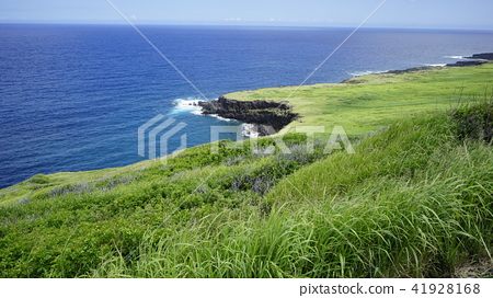 View from Ali Road on Hawaii Island 41928168