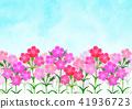 패랭이 꽃 꽃밭 41936723