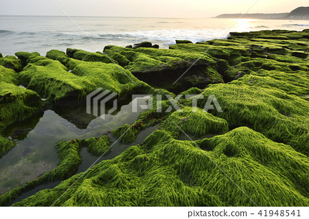 Old Meilu Green Trough - North Coast and Guanyinshan National Scenic Area 41948541