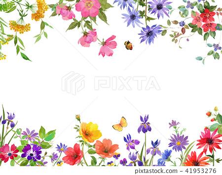 Flower border 41953276