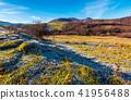 meadow frost hoarfrost 41956488