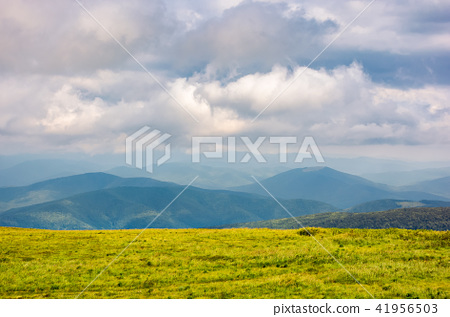 grassy alpine meadow in cloudy weather 41956503