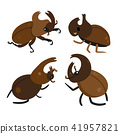 beetle vector collection design 41957821