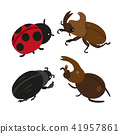 insect vector design 41957861