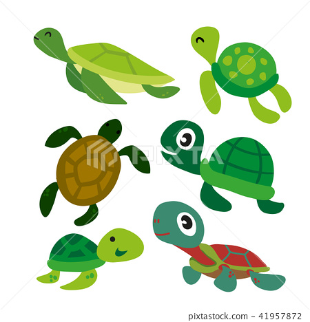 turtle vector collection design 41957872