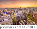 Kumamoto City, Japan Skyline 41961833