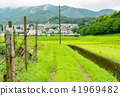 country, countryside, coutryside 41969482