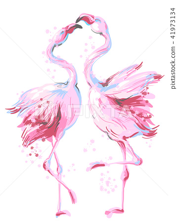 Two beautiful pink flamingos dancing in honeymoon, making love, vector hand drawn illustration 41973134