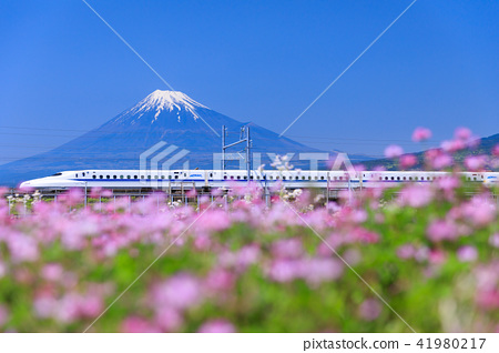 Shizuoka _ Fuji and the bullet train 41980217