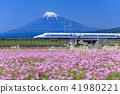 Shizuoka _ Fuji and the bullet train 41980221