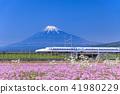 시즈오카 _ 후지산과 신칸센 41980229
