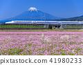 富士山 靜岡 東海道新幹線 41980233