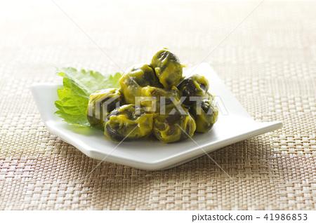 醃製 鹹菜 日本鹹菜 41986853