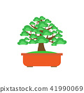 Bonsai Tree on white background ,Vector 41990069
