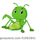Praying mantis cartoon 41992841