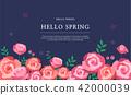 hello spring 1 42000039
