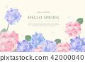 hello spring 2 42000040