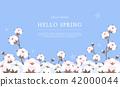 hello spring 6 42000044