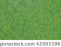 artificial turf, astroturf, lawn 42003396
