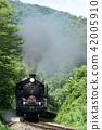SL在綠色中運行 42005910
