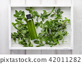 Mint shampoo or shower gel with fresh herbs in white tray 42011282
